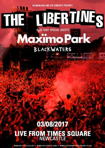 The Libertines UK Newcastle 2017 show